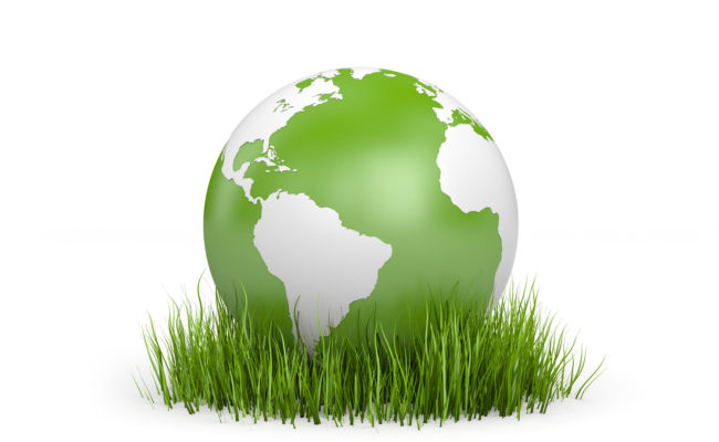 World in grass